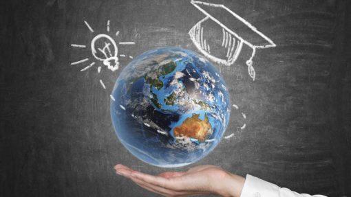 Любопытные факты из мира образования